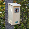 Red-Headed, Hairy and Red-Bellied Woodpecker House