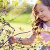 Bower & Branch® Highbush Blueberry Bushes