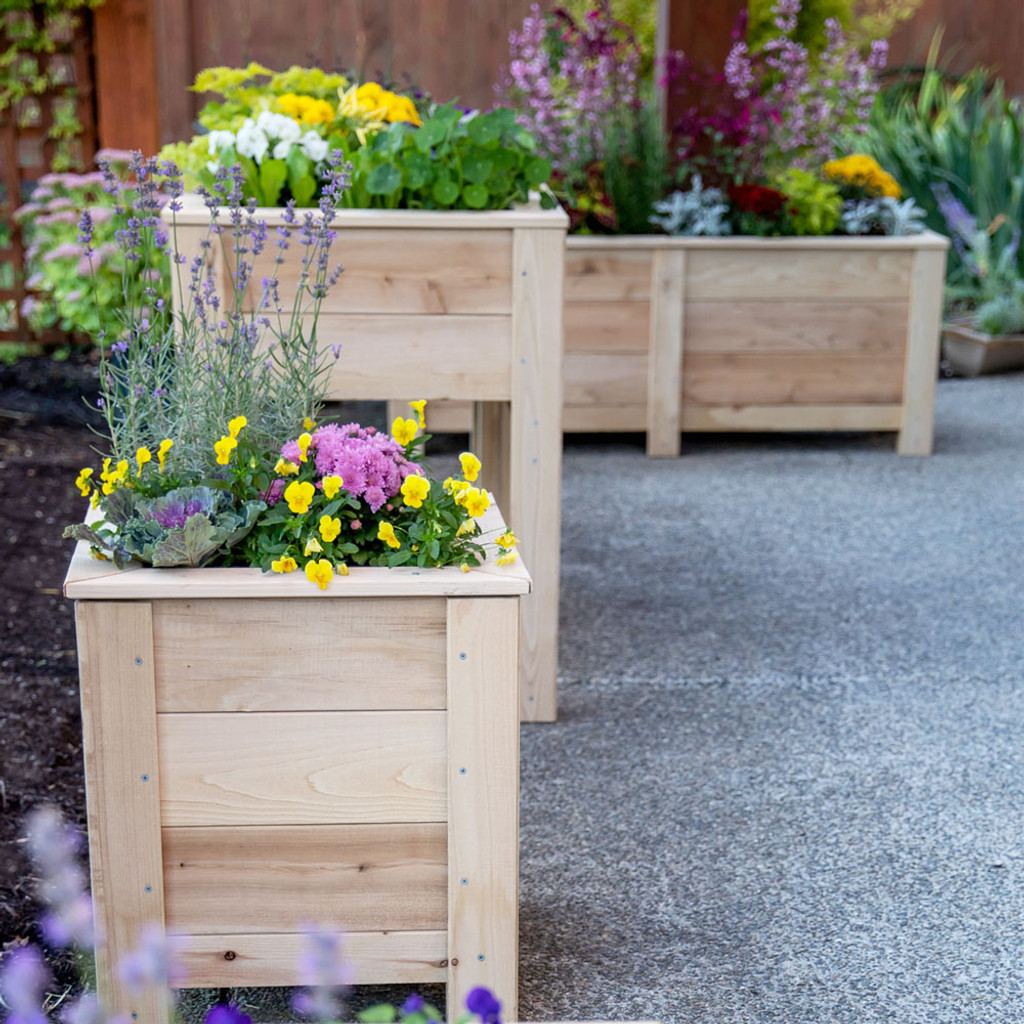 Regular planter boxes and elevated garden planter (middle)