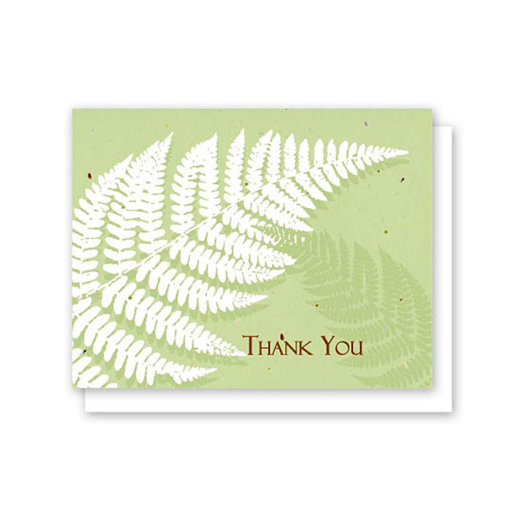 Grow-A-Note Fern Thank You Box Set - 5 Cards