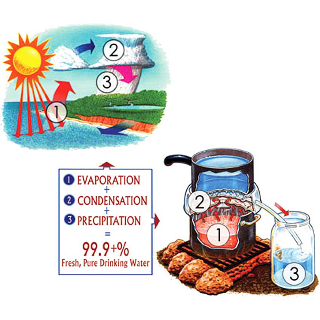 Survival Still Water Purifier and Desalinator
