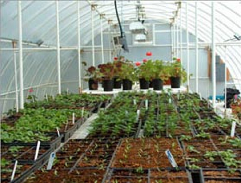 Solexx Conservatory Greenhouse Kit