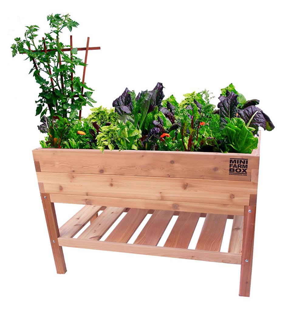 Rock-solid Cedar Planter with Bottom Shelf