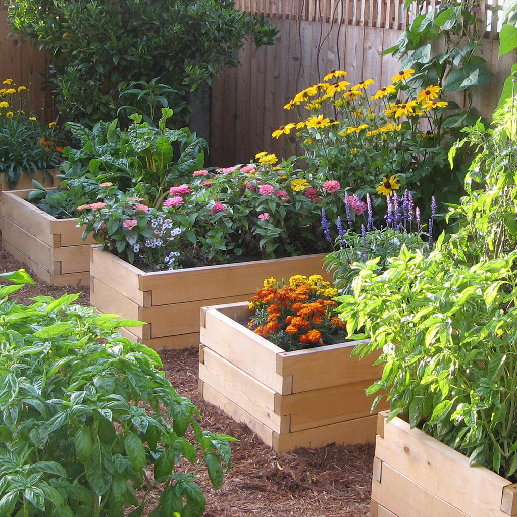 Gardening Beds: Natural Cedar Raised Garden Beds