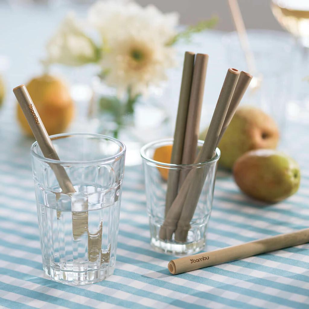 Bamboo Straws 6-Pack - Short