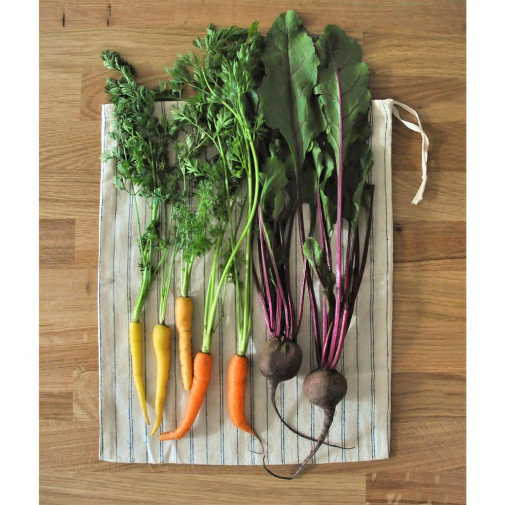 Organic Bulk Bags Set of 3