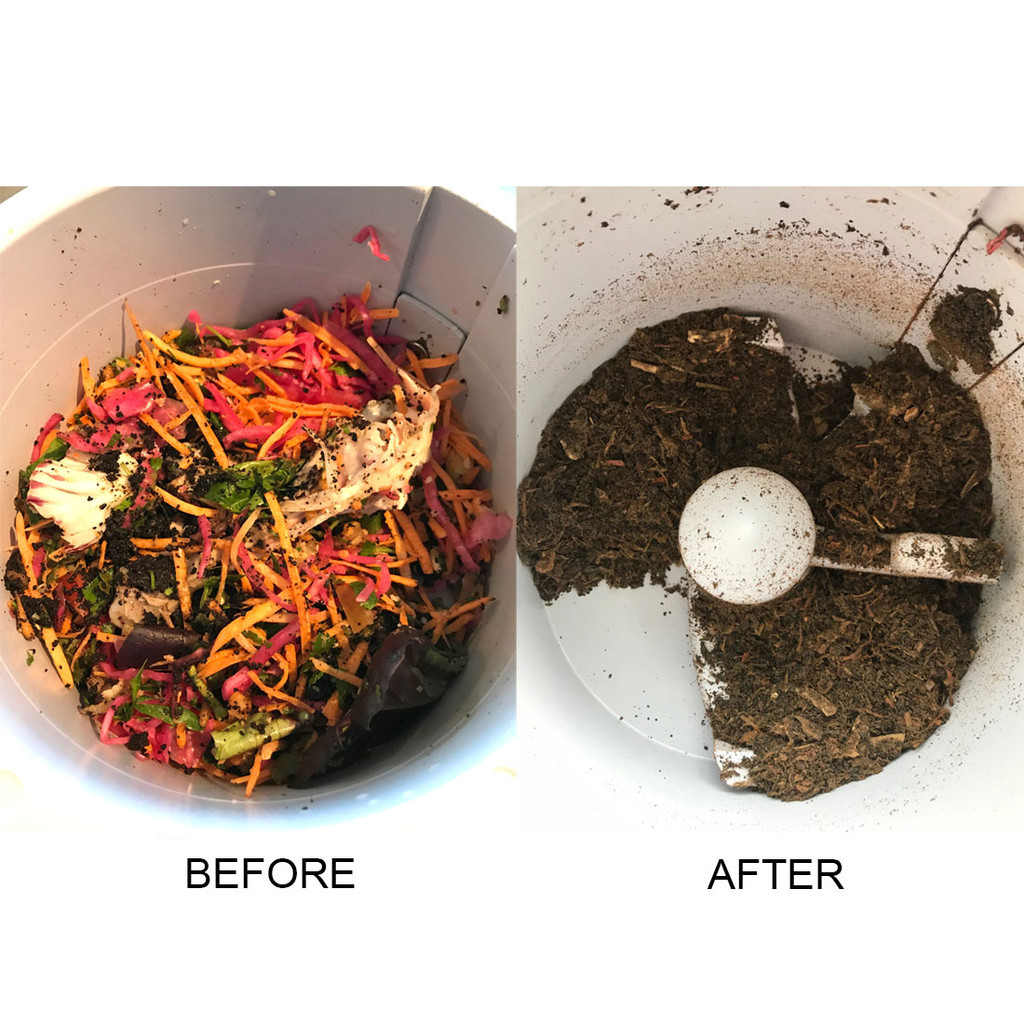 Food waste before and after cycle