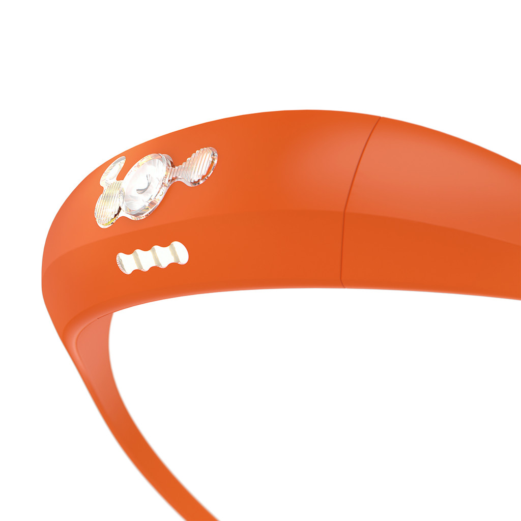 Bandicoot - Orange