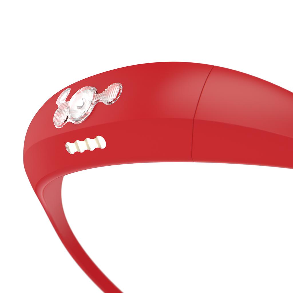 Bandicoot - Red