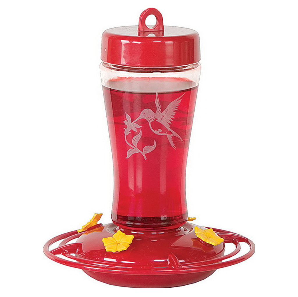 Etched Glass Hummingbird Feeder