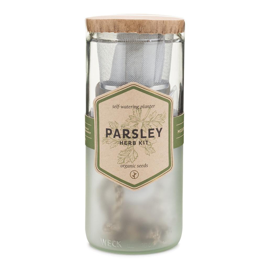 Parsley Eco Planter