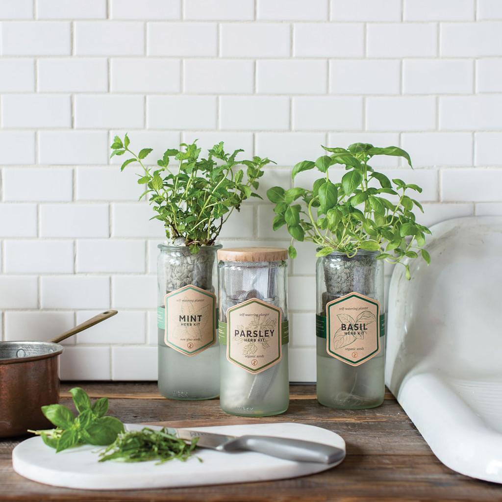 Mint Eco Planter