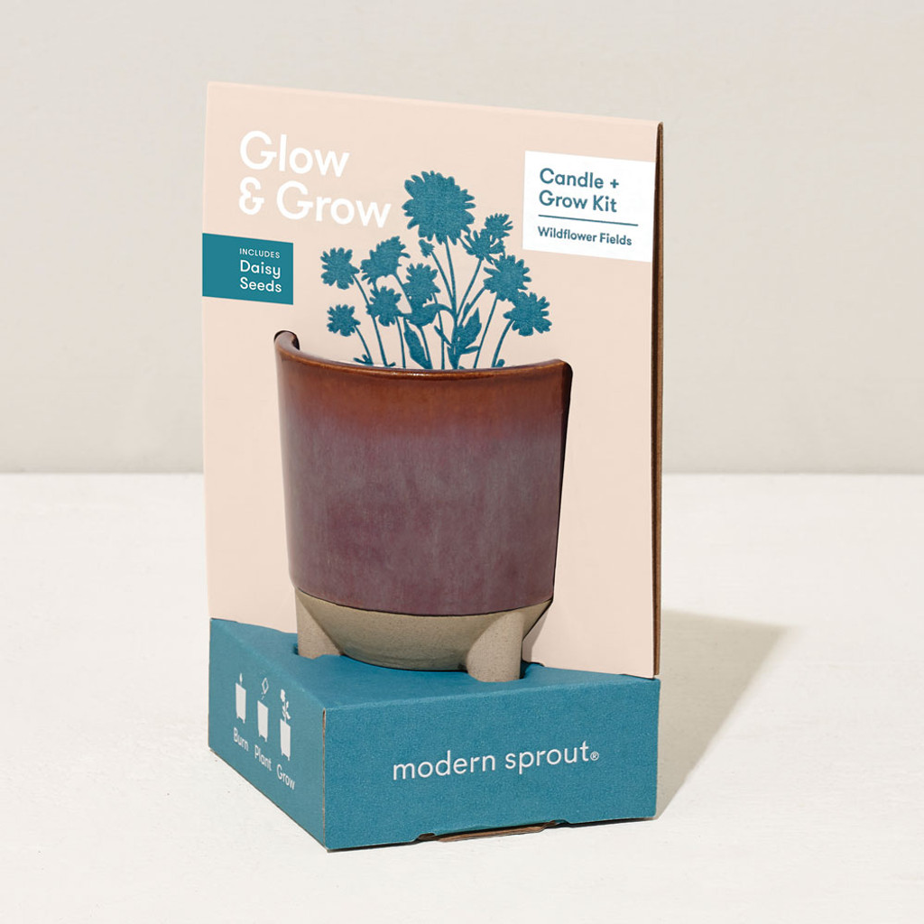 Glow & Grow Candle Flower Planter Kit
