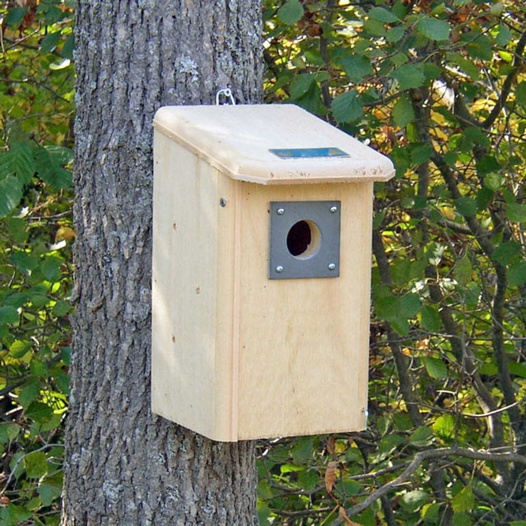 Summer Nest Box with entry at the top