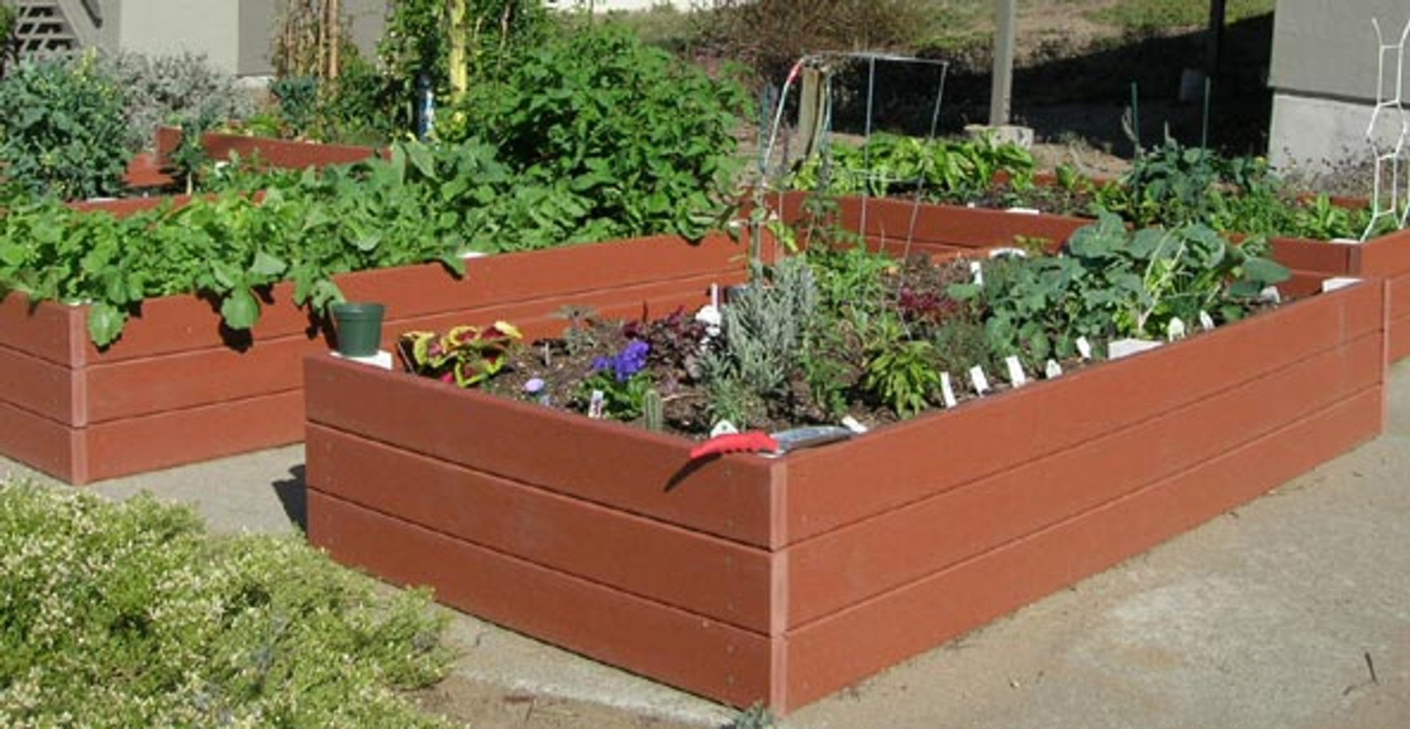 Picture of: Recycled Plastic Raised Garden Bed 4 X 8 X 11 Eartheasy Com