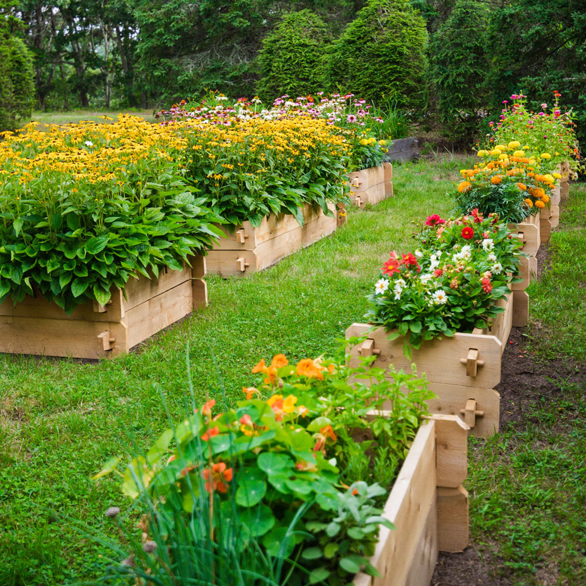 Enclosed Bed Google Search: Farmstead Raised Garden Bed