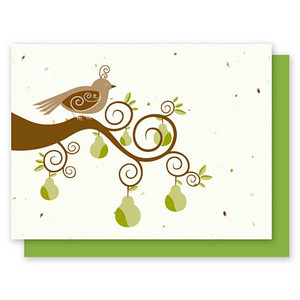 Grow-A-Note Partridge Box Set - 5 Cards