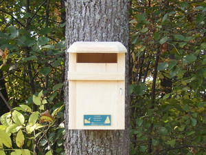 Sparrow-resistant Bluebird House