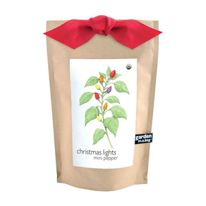 Christmas Lights Pepper Garden-in-a-bag