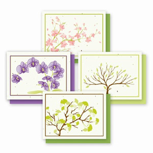 Grow-A-Note Landscape Variety Box Set - 4 Cards
