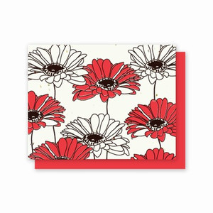 Grow-A-Note Gerber Daisy Box Set - 5 Cards