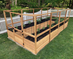 Deer Proof Cedar Complete Raised Garden Bed Kit - 8' x 16'