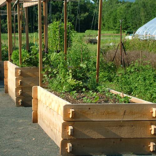 Farmstead Raised Garden Bed Eartheasy Com