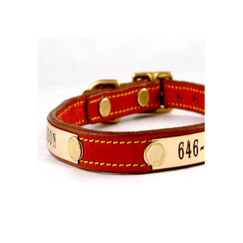 Tiny Dog Collar - 2 Nameplates