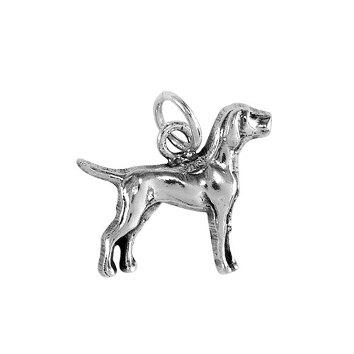Pointer Small Charm
