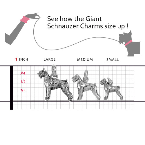 Giant Schnauzer Charms compared