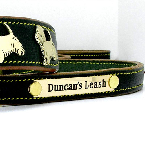 Classic Bridle Leather 5 ft Leash with Engraved Nameplate