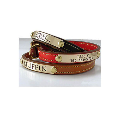 Tiny Dog Collar - 1 Nameplate