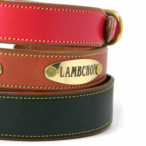 Plain Bridle Leather Dog Collar with nameplate