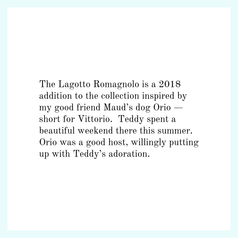 lagotto-text.png