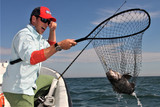 Jigging Black Sea Bass