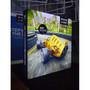 Casonara SEG Light Box Display