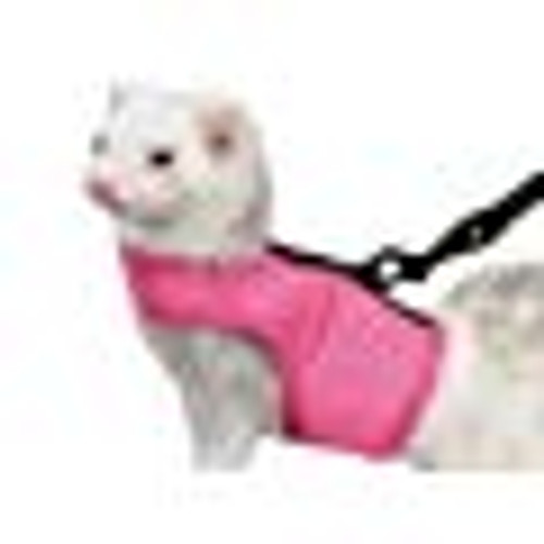 Ferret Harness and Lead Set