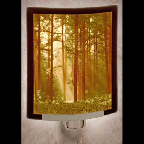 Woodland Sunbeams Nite Light (Color)