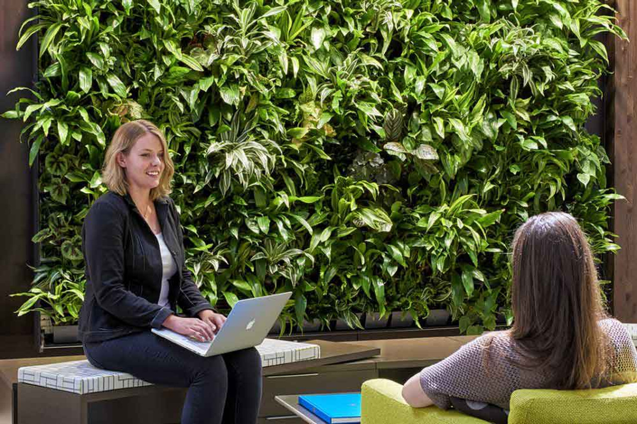 Start a Green Committee in Your Office