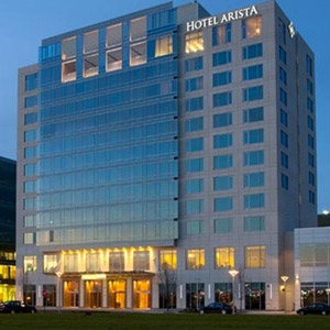 Arista Hotel Bedding By DOWNLITE