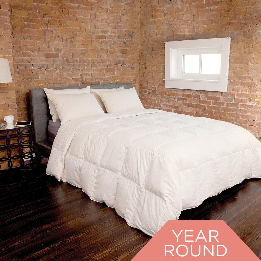 Organic Cotton 550 FP RDS Down Comforter