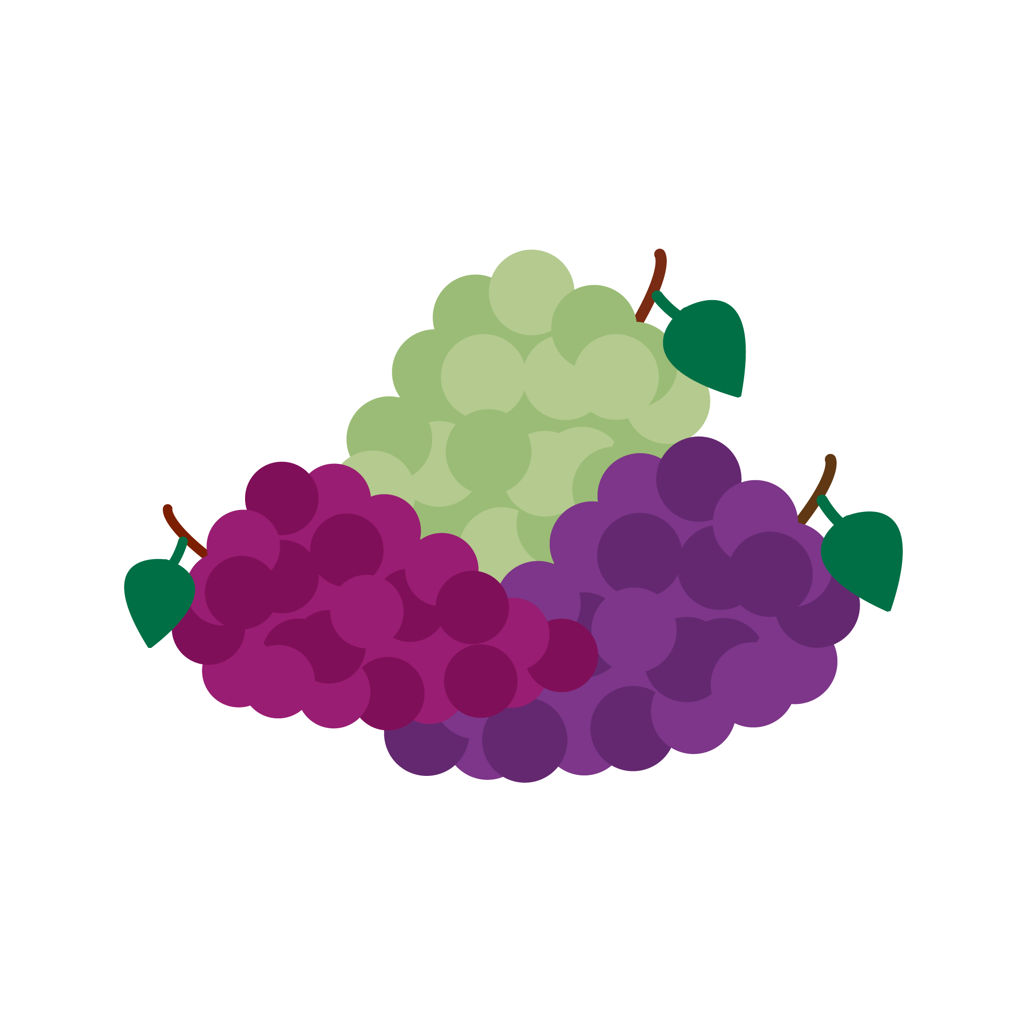 Grape flavor graphic for INFUSION drink manufactured by Bubble Sip, LLC.