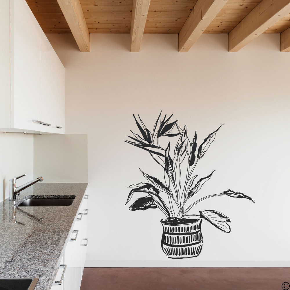 The hand drawn Bird of Paradise potted plant wall decal in the black vinyl color.