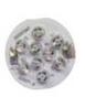 OP35-0220-91 LED light Artesian Spas