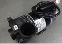 Coast Spa 3HP 2-Speed Pump 3721221-0D8