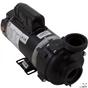 Balboa Vico 1.5HP 115V 2-Speed Pump 1014054-2HZN