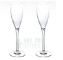 Spa Champagne Flutes Glasses Unbreakable 2-Pack Tritan