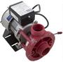 DreamMaker Aquarest Spa Circ Pump 115V 1-Speed FMCP
