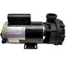 56WUA300-II spa pump