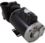 "Executive Pump 2HP US Motor 230v 2-Spd 56fr 2-1/2"" x 2"" 3720821-13HZN"